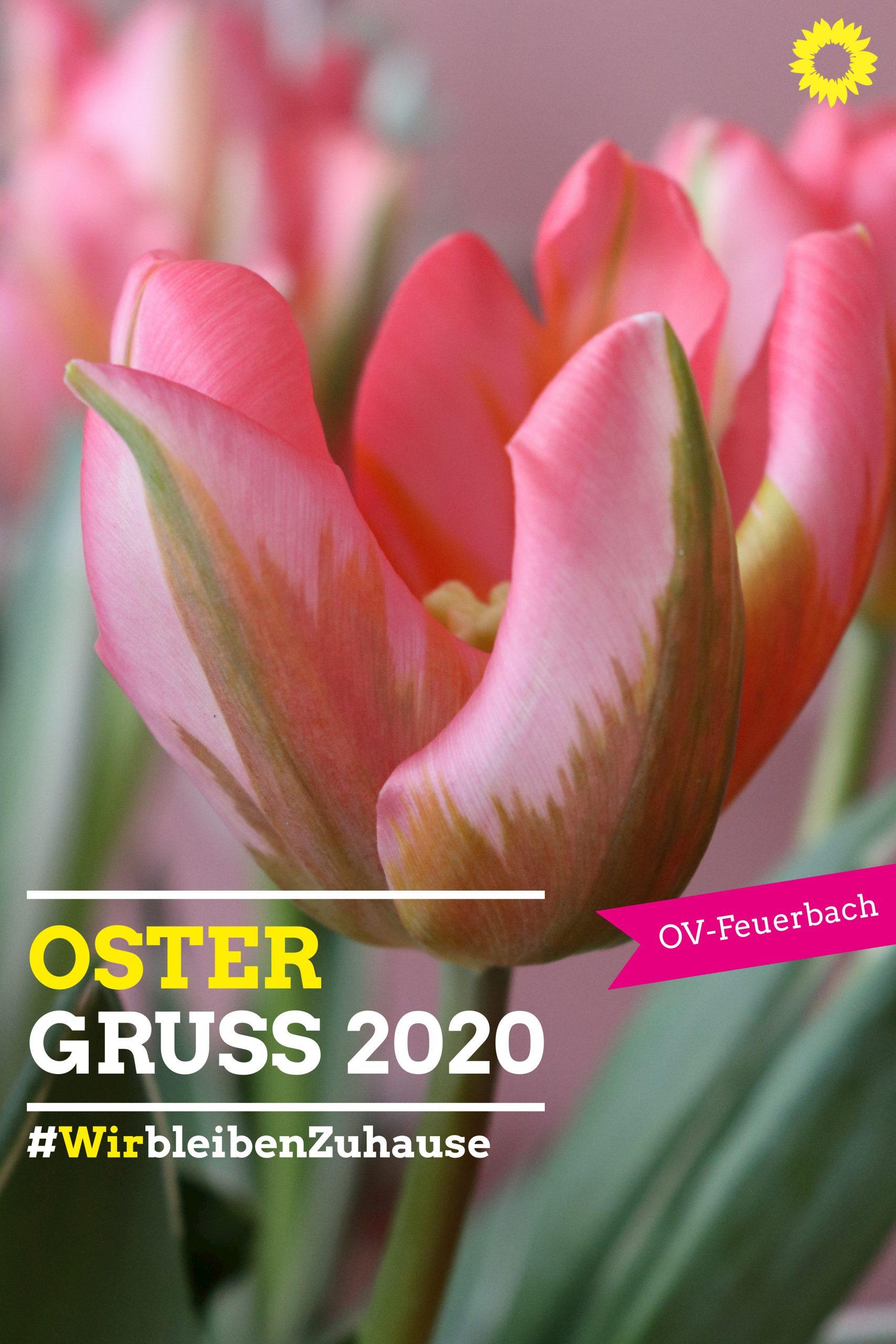 Oster Gruss 2020