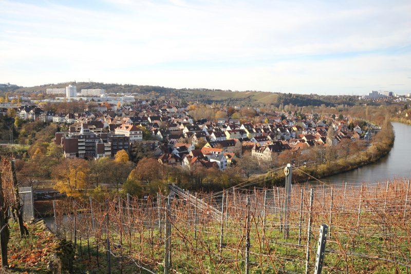 Blick auf Stadtbezirk Münster und den Neckar